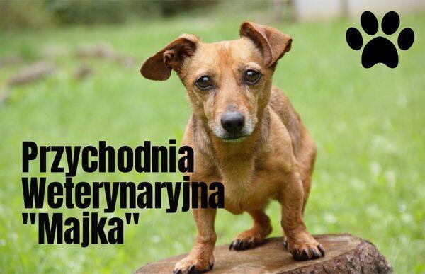 PRZYCHODNIA WETERYNARYJNA MAJKA SP. Z O.O. - Logo lecznicy - WORLDPETNET