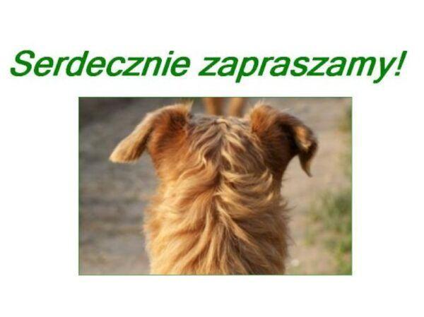"""ZAPYTAJ STRONĘ GABINET WETERYNARYJNY """"TYSIĄCLECIA"""" - Logo lecznicy - WORLDPETNET"""