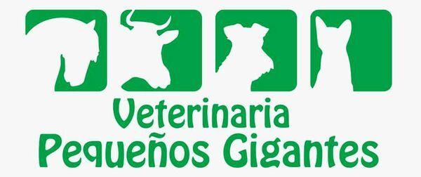 VETERINARIA PEQUEÑOS GIGANTES - Logo lecznicy - WORLDPETNET