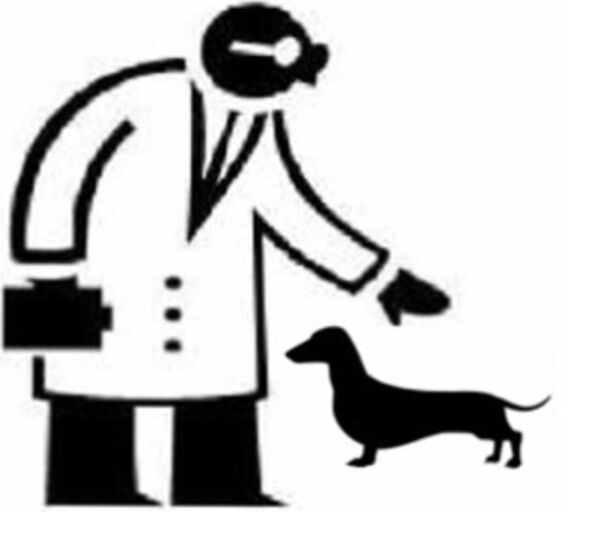 VETCON - Logo lecznicy - WORLDPETNET