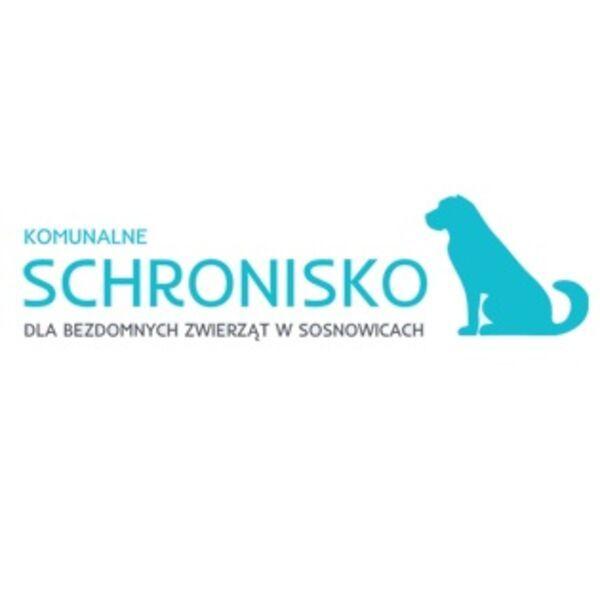 KOMUNALNE SCHRONISKO DLA BEZDOMNYCH ZWIERZĄT W SOSNOWICACH - Shelter logo – WORLDPETNET