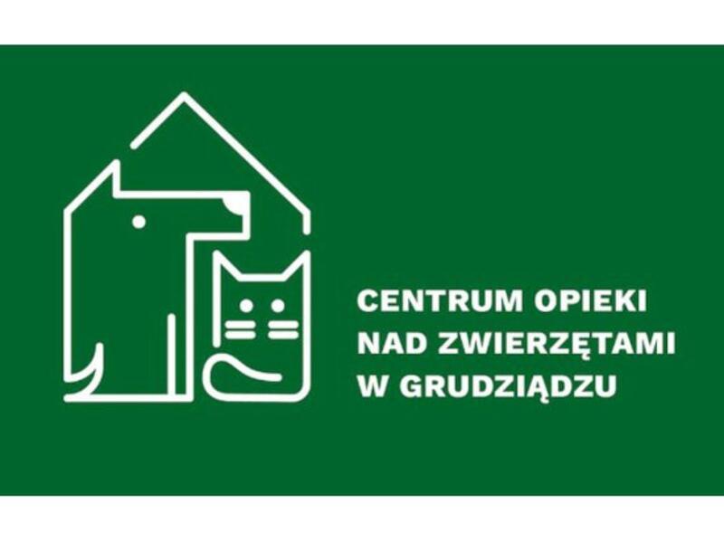 SCHRONISKO DLA ZWIERZĄT W GRUDZIĄDZU CENTRUM OPIEKI NAD ZWIERZĘTAMI - Tierheim-Worldpetnet- #15