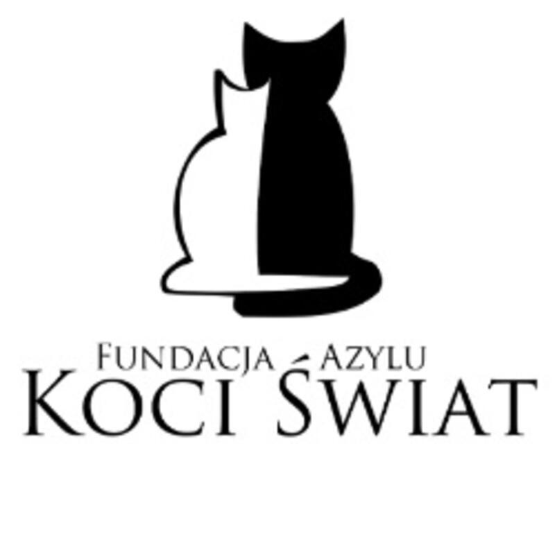 FUNDACJA AZYLU KOCI ŚWIAT - refuge-pour-animaux-worldpetnet - #15