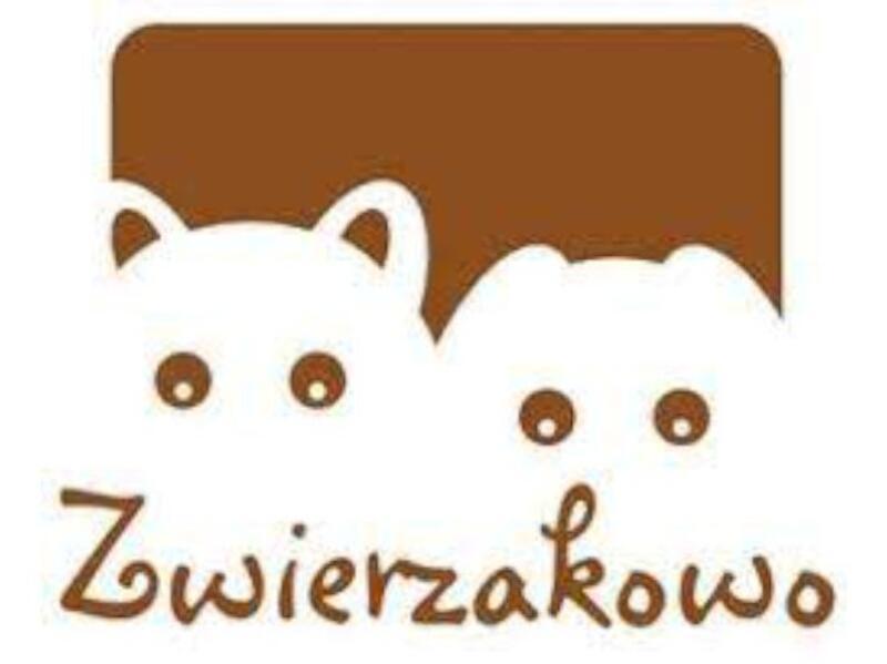 SCHRONISKO DLA BEZDOMNYCH PSÓW ZWIERZAKOWO - animal-shelter-worldpetnet - #15