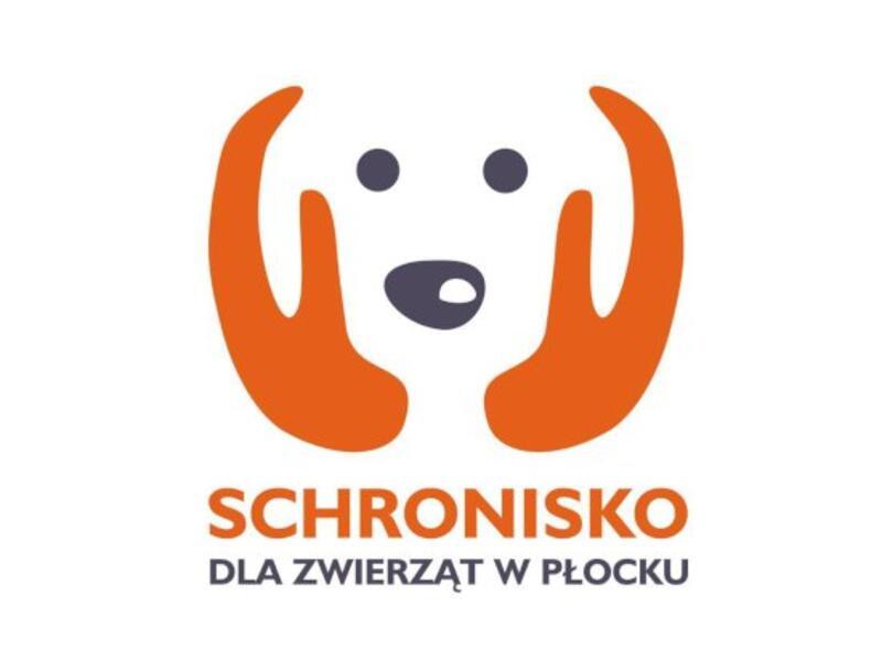 SCHRONISKO DLA ZWIERZĄT W PŁOCKU - schronisko-dla-zwierzat-worldpetnet - #15