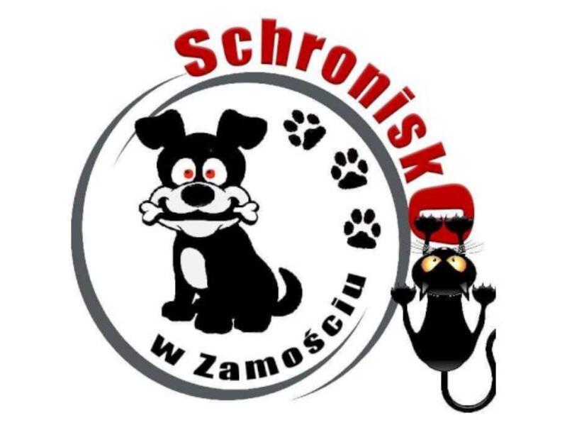 SCHRONISKO DLA ZWIERZĄT W ZAMOŚCIU - animal-shelter-worldpetnet - #15