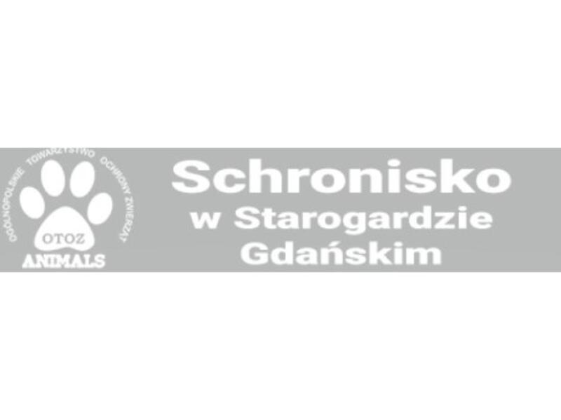 SCHRONISKO DLA ZWIERZĄT W STAROGARDZIE GDAŃSKIM  - Tierheim-Worldpetnet- #15