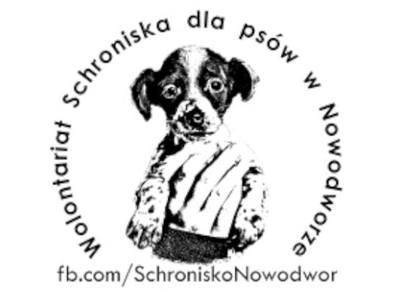 SCHRONISKO DLA ZWIERZĄT W LUBARTOWIE W NOWODWORZE - Tierheim-Worldpetnet- #15