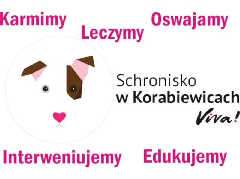 SCHRONISKO W KORABIEWICACH - VIVA - Tierheim-Worldpetnet- #15