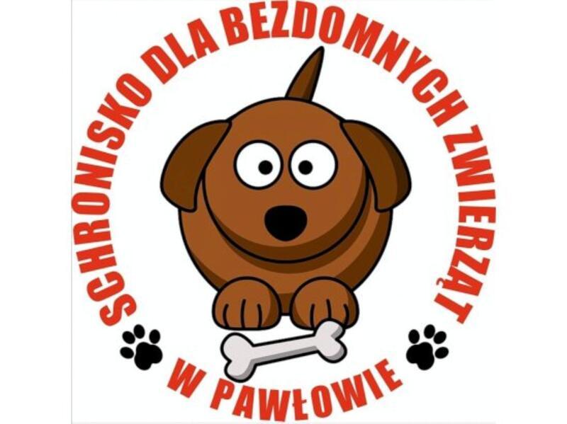 SCHRONISKO DLA ZWIERZĄT W PAWŁOWIE - animal-shelter-worldpetnet - #15