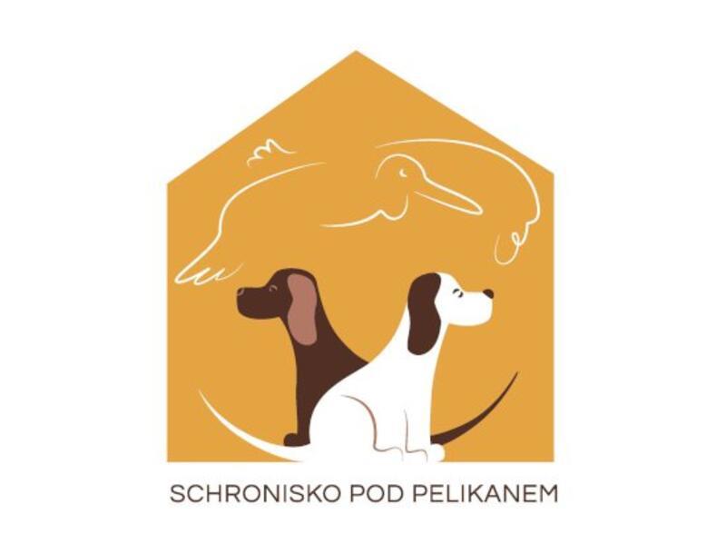 SCHRONISKO DLA ZWIERZĄT W ŁOWICZU - animal-shelter-worldpetnet - #15