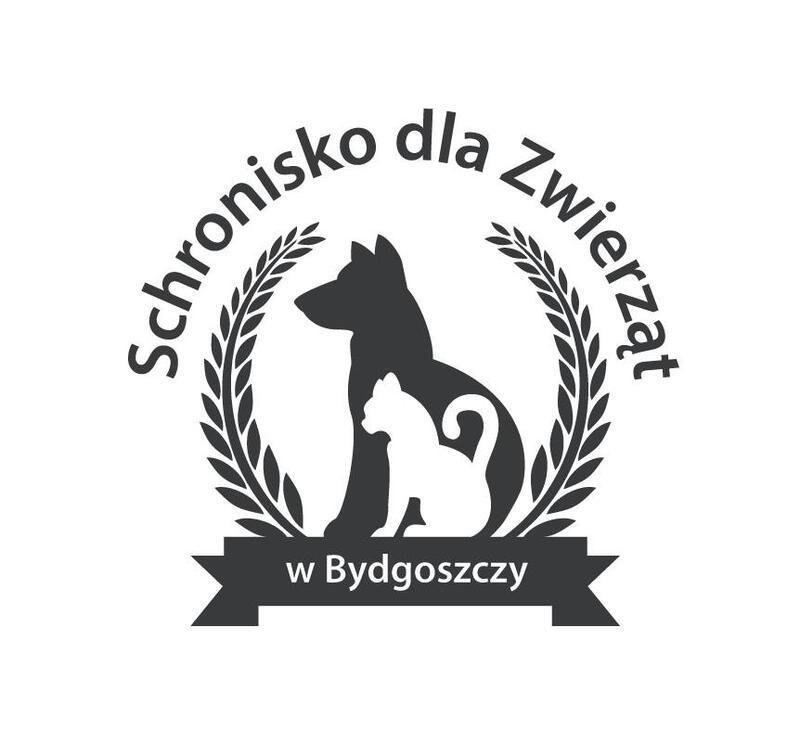 SCHRONISKO DLA ZWIERZĄT W BYDGOSZCZY - Tierheim-Worldpetnet- #15