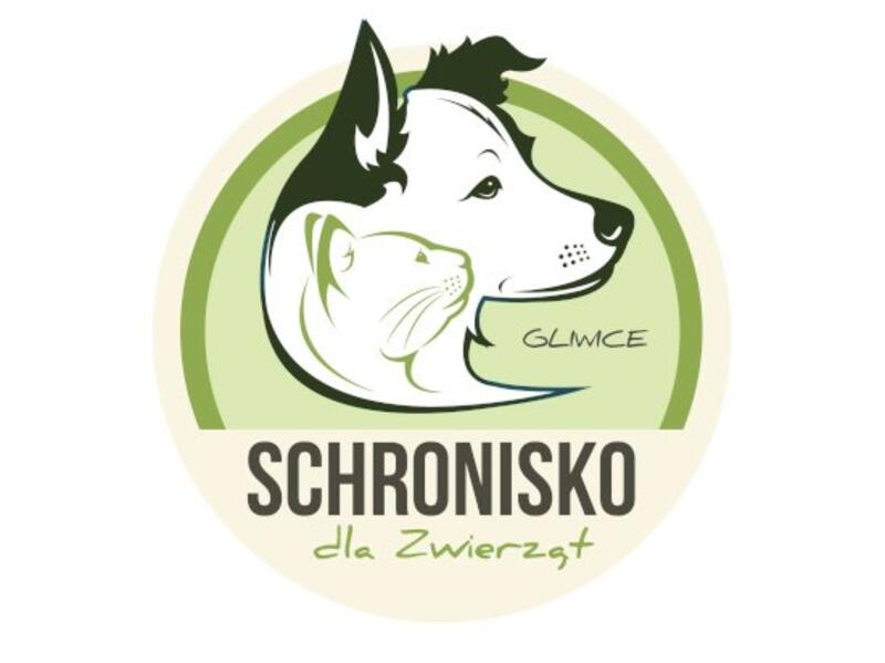 SCHRONISKO DLA ZWIERZĄT W GLIWICACH - animal-shelter-worldpetnet - #15