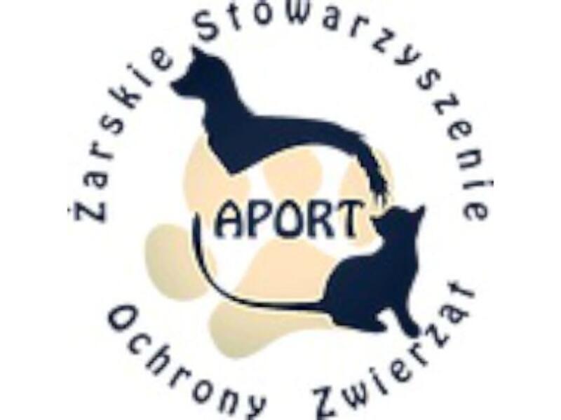 ŻARSKIE STOWARZYSZENIE OCHRONY ZWIERZĄT APORT - animal-shelter-worldpetnet - #15