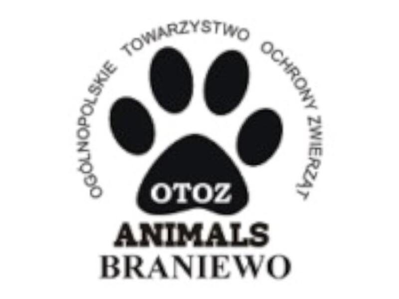 OTOZ ANIMALS INSPEKTORAT W BRANIEWIE - schronisko-dla-zwierzat-worldpetnet - #15