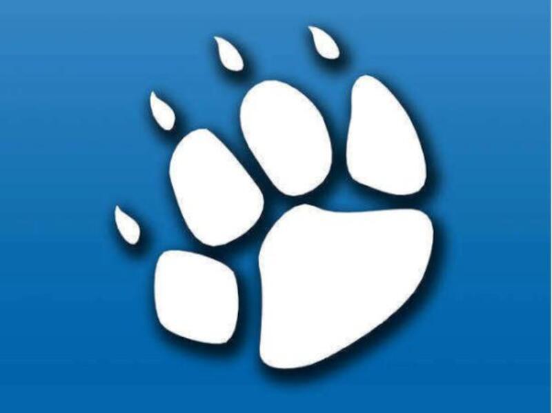 SCHRONISKO DLA ZWIERZĄT W CZĘSTOCHOWIE - animal-shelter-worldpetnet - #15
