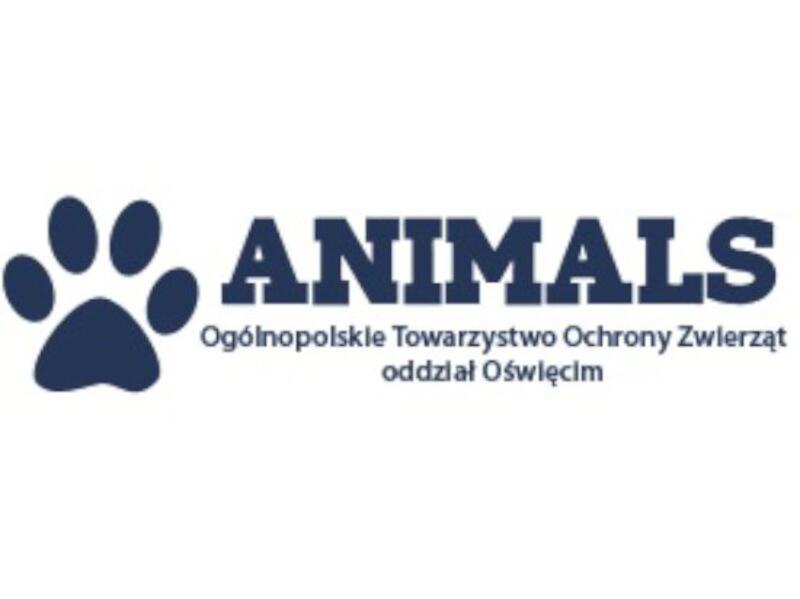 SCHRONISKO DLA ZWIERZĄT W OŚWIĘCIMIU - animal-shelter-worldpetnet - #15