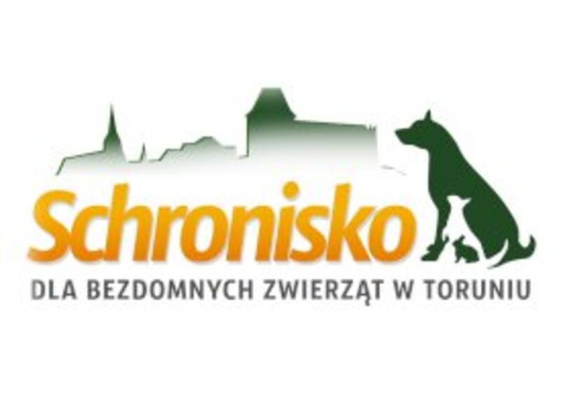 SCHRONISKO DLA ZWIERZĄT W TORUNIU - Tierheim-Worldpetnet- #15
