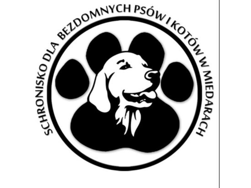 SCHRONISKO DLA ZWIERZĄT W MIEDARACH - schronisko-dla-zwierzat-worldpetnet - #15