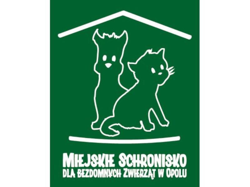 SCHRONISKO DLA ZWIERZĄT W OPOLU - schronisko-dla-zwierzat-worldpetnet - #15