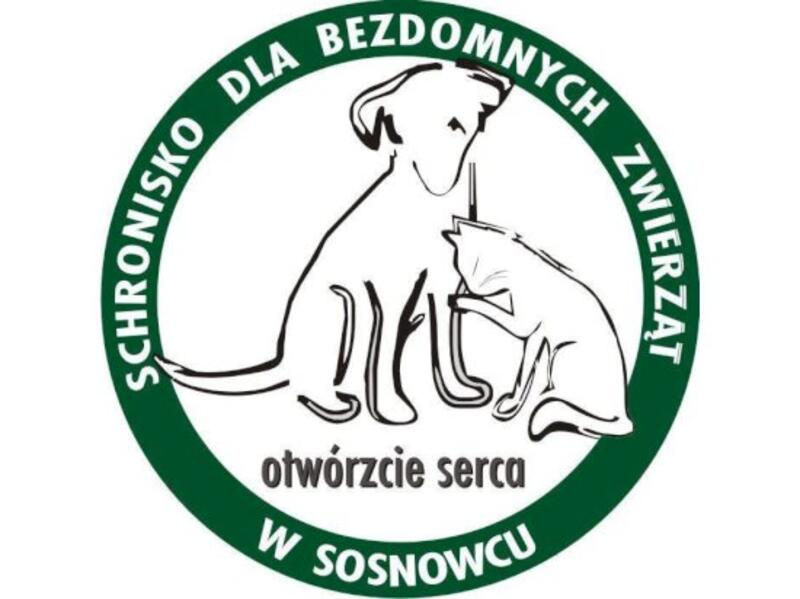 SCHRONISKO DLA ZWIERZĄT W SOSNOWCU - schronisko-dla-zwierzat-worldpetnet - #15