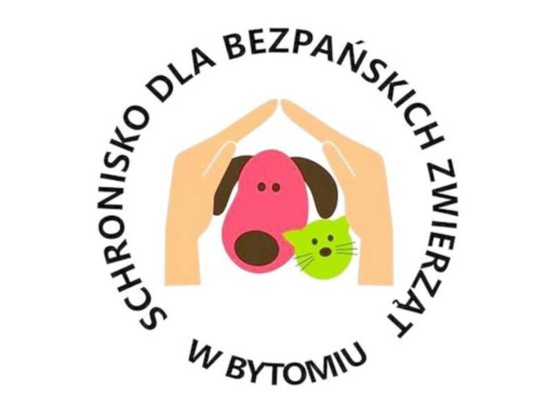 SCHRONISKO DLA ZWIERZĄT W BYTOMIU MIECHOWICACH - animal-shelter-worldpetnet - #15