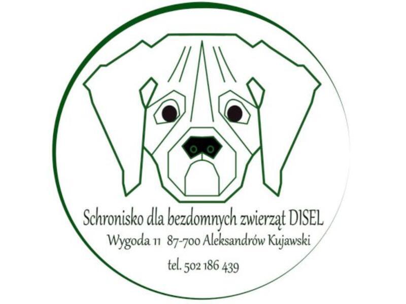 SCHRONISKO DLA BEZDOMNYCH ZWIERZĄT DISEL - animal-shelter-worldpetnet - #15