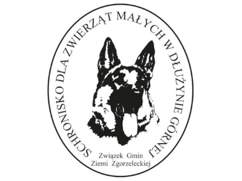 SCHRONISKO DLA ZWIERZĄT W PIEŃSKU - animal-shelter-worldpetnet - #15