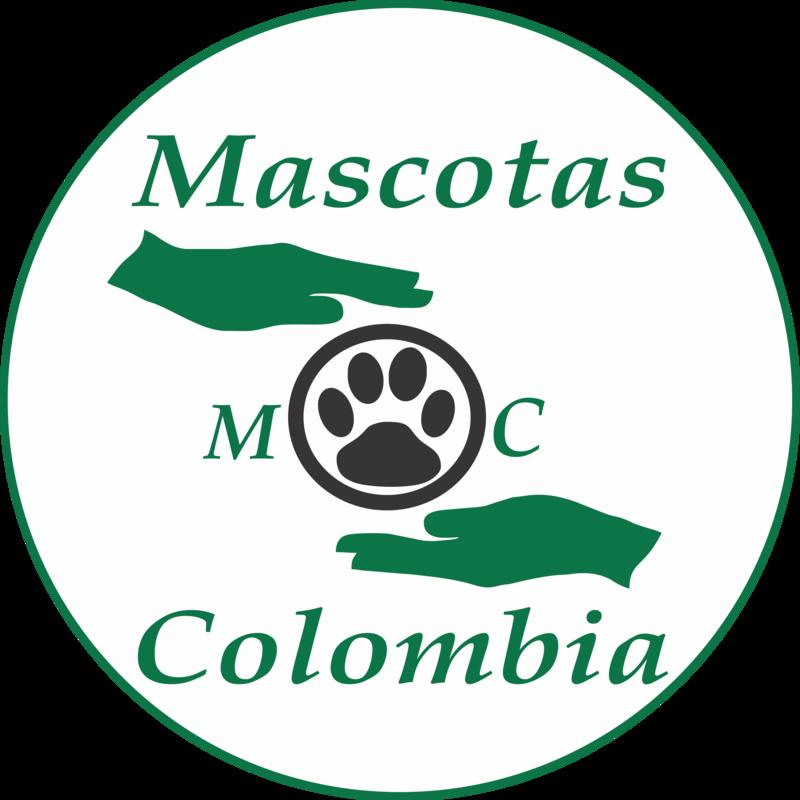 MASCOTAS COLOMBIA - schronisko-dla-zwierzat-worldpetnet - #15