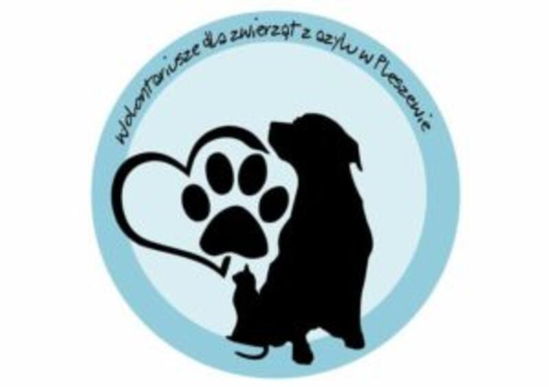 AZYL DLA ZWIERZĄT W PLESZEWIE - animal-shelter-worldpetnet - #15