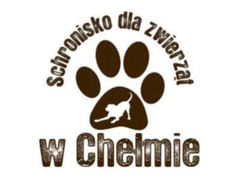 SCHRONISKO DLA ZWIERZĄT W CHEŁMIE - Tierheim-Worldpetnet- #15