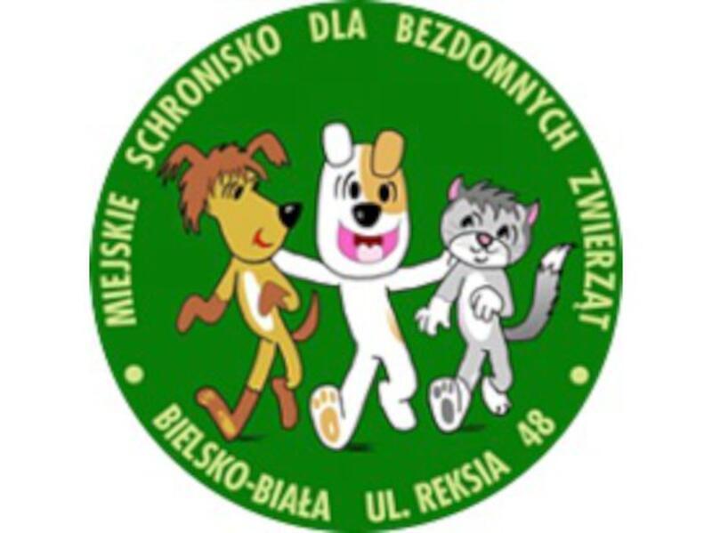 SCHRONISKO DLA ZWIERZĄT W BIELSKO-BIAŁEJ - schronisko-dla-zwierzat-worldpetnet - #15