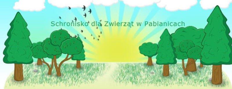 SCHRONISKO DLA ZWIERZĄT W PABIANICACH - schronisko-dla-zwierzat-worldpetnet - #15