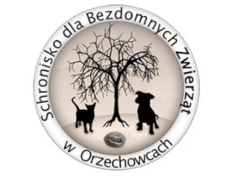 SCHRONISKO DLA BEZDOMNYCH ZWIERZĄT W ORZECHOWCACH - schronisko-dla-zwierzat-worldpetnet - #15
