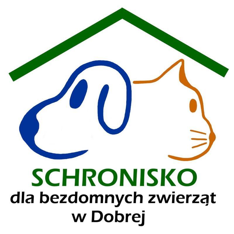 SCHRONISKO DLA BEZDOMNYCH ZWIERZĄT W DOBREJ - animal-shelter-worldpetnet - #15