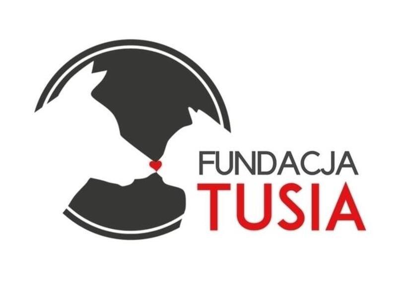 PROJEKT TUSIA - schronisko-dla-zwierzat-worldpetnet - #15