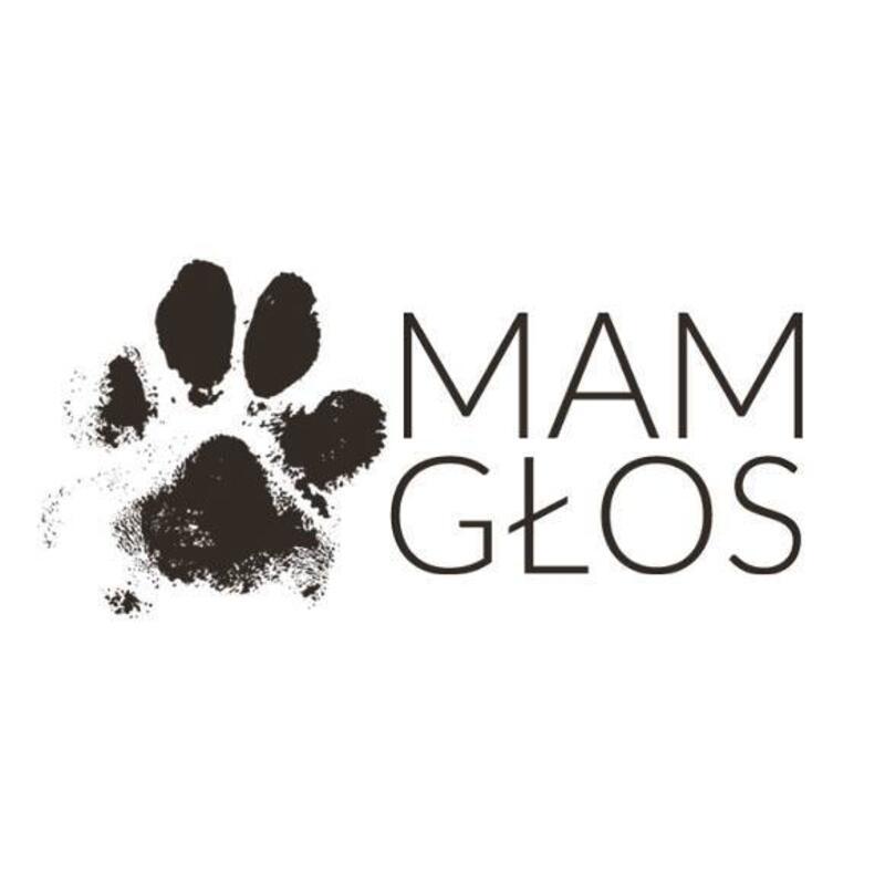 """STOWARZYSZENIE POMOCY ZWIERZĘTOM """"MAM GŁOS"""" - animal-shelter-worldpetnet - #15"""