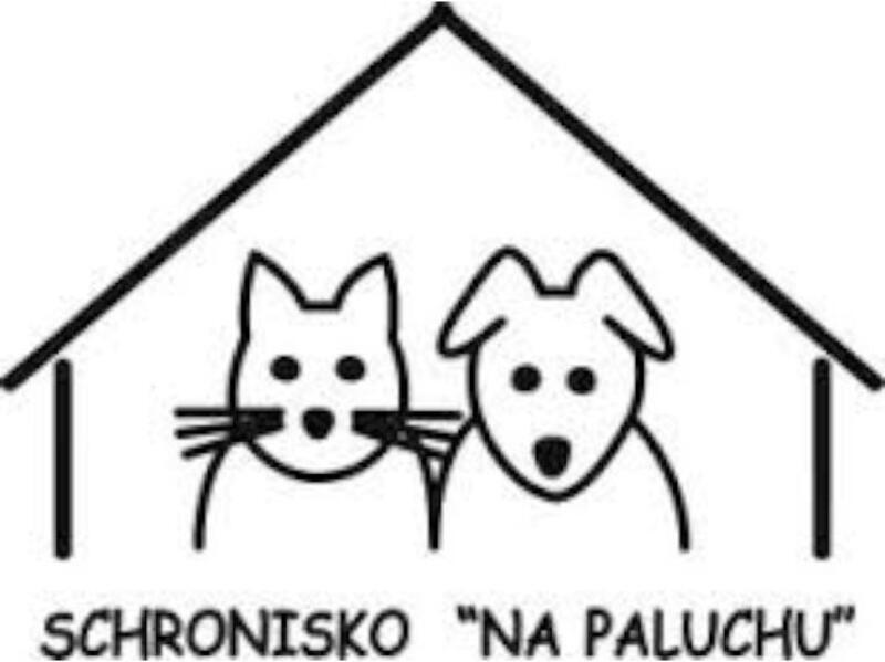 "SCHRONISK DLA ZWIERZĄT  ""NA PALUCHU"" - Tierheim-Worldpetnet- #15"