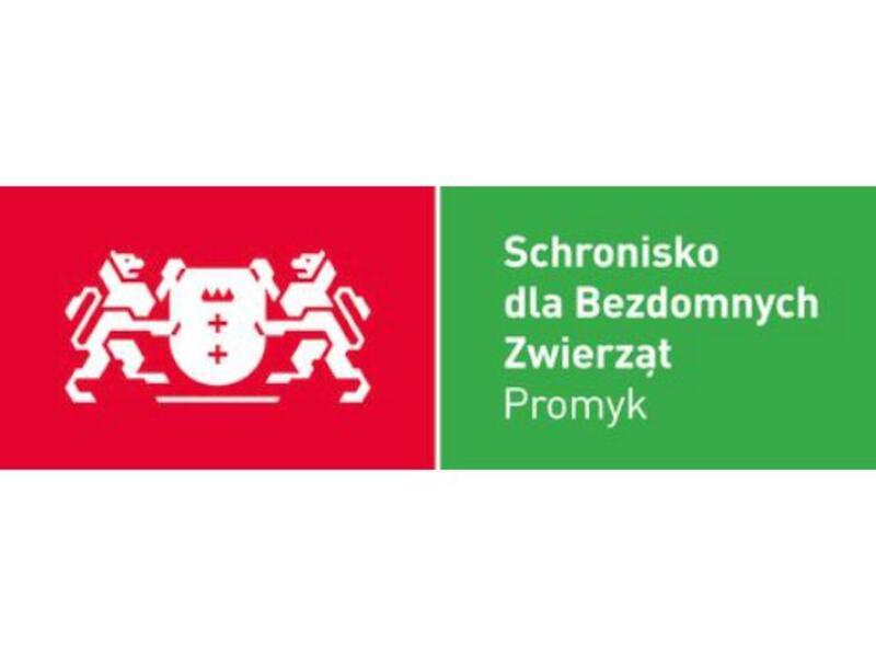 """SCHRONISKO DLA ZWIERZĄT W GDAŃSKU """"PROMYK"""" - Tierheim-Worldpetnet- #15"""