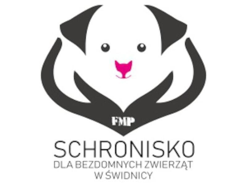 SCHRONISKO ŚWIDNICA - schronisko-dla-zwierzat-worldpetnet - #15