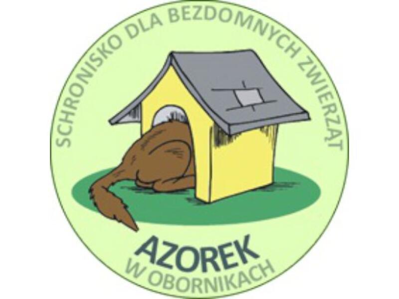"""SCHRONISKO DLA BEZDOMNYCH ZWIERZĄT """"AZOREK"""" - animal-shelter-worldpetnet - #15"""