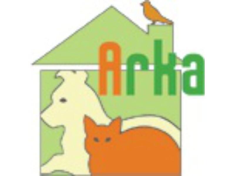 SCHRONISKO DLA ZWIERZĄT W SOCHACZEWIE AZOREK - animal-shelter-worldpetnet - #15