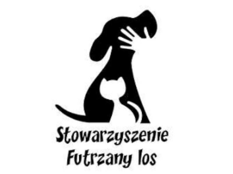 SCHRONISKO DLA ZWIERZĄT W ŻYWCU - animal-shelter-worldpetnet - #15