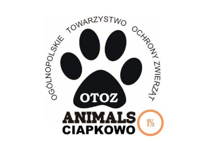 """OTOZ Animals - Schronisko dla Bezdomnych Zwierząt """"CIAPKOWO"""" - schronisko-dla-zwierzat-worldpetnet - #15"""