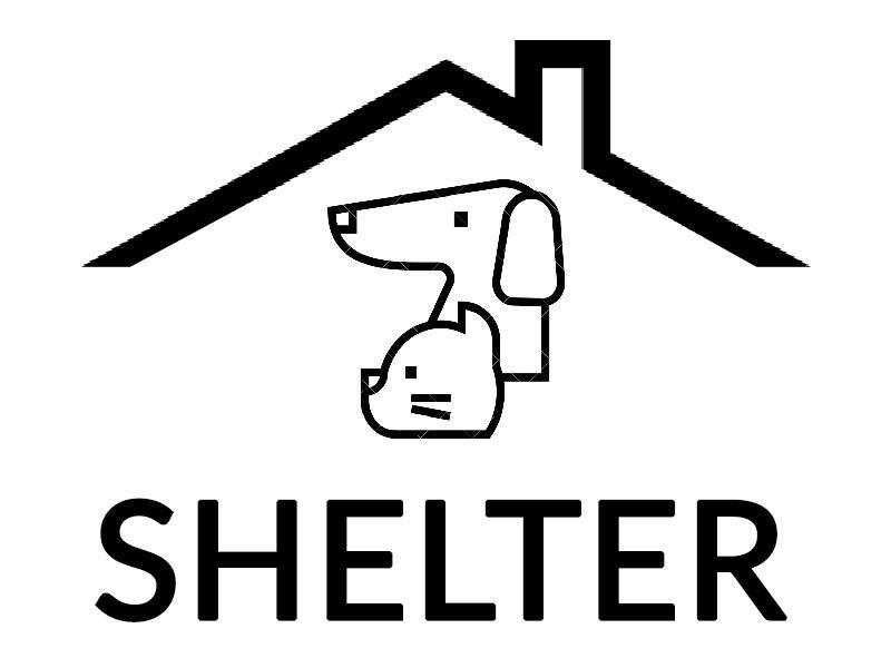 Hotel Dla Zwierząt Tymczasik Arkadiusz Gawron - animal-shelter-worldpetnet - #15
