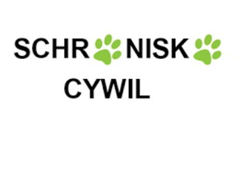 FHU ZIBI-SCHRONISKO CYWIL - Tierheim-Worldpetnet- #15