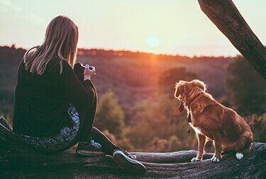 Dlaczego warto zarejestrować zwierzę w WORLDPETNET